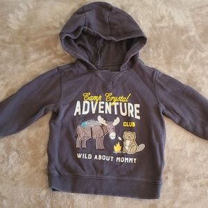 Boys 3T hooded sweatshirt